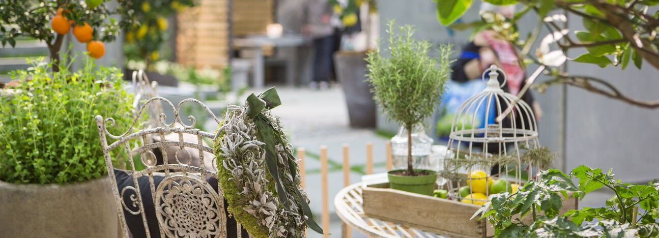 OFFA 2017 - Garten Natur Highlight-Teaser